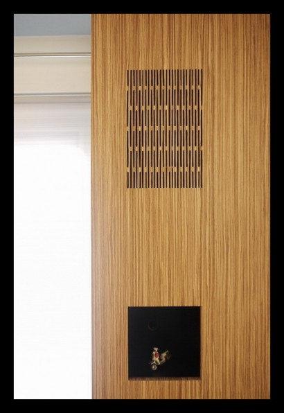 aanbouw-huiskamer-kast-op maat gemaakt-audio